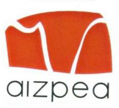 Aizpea euskara taldea